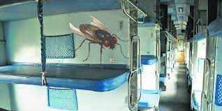 चलती ट्रेन में उड़ती हुई मक्खी कभी दीवार से नहीं टकराती, ये है वजह